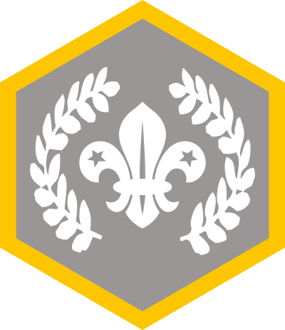 Chief Scouts Award (Replacement)